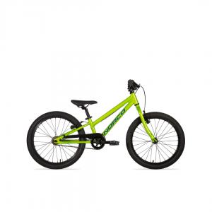 2021-roller-20-green (1)